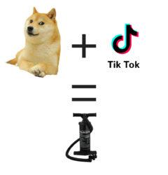 doge+tiktok