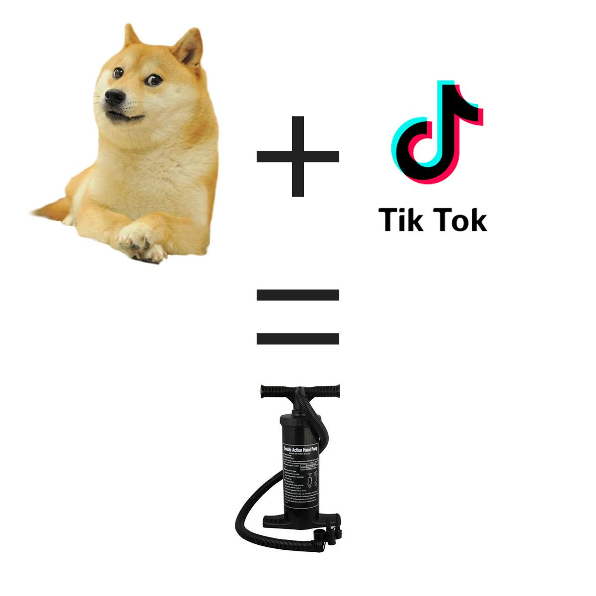 DOGE + TikTok = PUMP